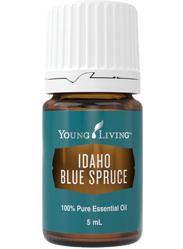 Świerk Niebieski olejek eteryczny (Picea pungens) | Idaho Blue Spruce, 5 ml