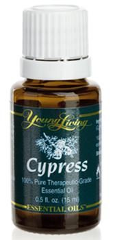 Cyprys olejek eteryczny (Cupressus sempervirens) | Cypress Essential Oil, 15 ml