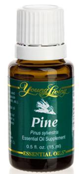 Sosna olejek eteryczny (Pinus sylvestris) | Pine Essential Oil, 15 ml