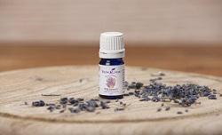 Dzika Lawenda olejek eteryczny | Wild Lavender Essential Oil, 5 ml