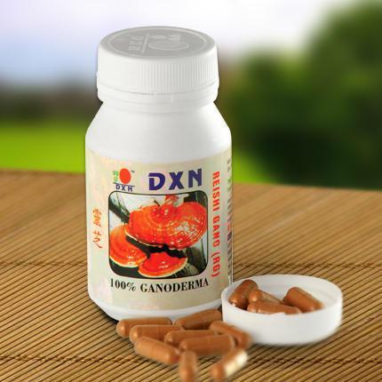 Reishi Gano (RG) /sproszkowany grzyb Ganoderma lucidum, 90 kapsułek