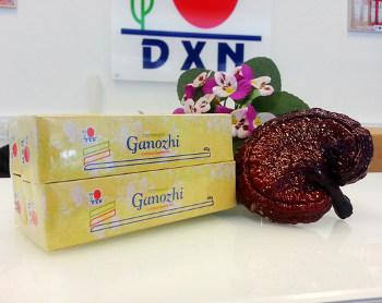Pasta do zębów Ganozhi 4x40 g