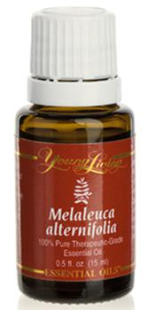 Drzewo Herbaciane olejek eteryczny (Melaleuca Alternifolia) | Tea Tree  Essential Oil, 15 ml
