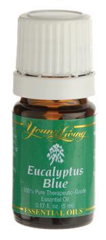 Eukaliptus Błękitny olejek eteryczny (Eucalyptus bicostata) | Eucalyptus Blue Essential Oil, 5 ml