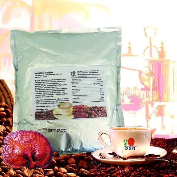 Zhi Mocha /mieszanka kawy instant, wyciągu z ganodermy i kakao, 1 kg (opakowanie MEGA)